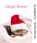 Stock photo beautiful kitten in santa claus cap sleeping in basket on white background 114680476