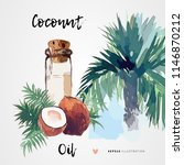 coconut oil for hair and skin... | Shutterstock .eps vector #1146870212