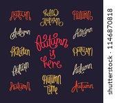 set of unique handwritten... | Shutterstock .eps vector #1146870818