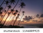 ocean beach on sunset with row... | Shutterstock . vector #1146889925