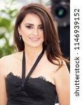 spanish actress penelope cruz... | Shutterstock . vector #1146939152