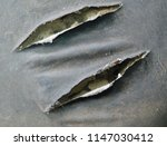 old black leather sofa torn.   Shutterstock . vector #1147030412