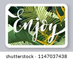 summer tropical vector design... | Shutterstock .eps vector #1147037438