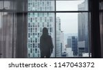 silhouette of young pretty...   Shutterstock . vector #1147043372