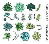 decorative color graphic... | Shutterstock .eps vector #1147044848