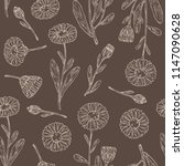 seamless pattern with calendula ... | Shutterstock .eps vector #1147090628