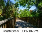 Wooden Boardwalk  Part Of The...