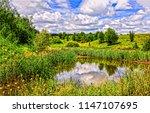 summer green nature river...   Shutterstock . vector #1147107695