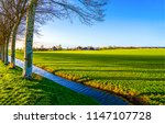 agriculture farm field river... | Shutterstock . vector #1147107728