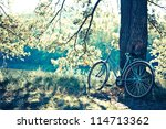 biking in the forest under the... | Shutterstock . vector #114713362