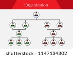 organization chart infographics  | Shutterstock .eps vector #1147134302
