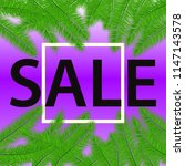 sale banner with palm leaves.... | Shutterstock .eps vector #1147143578