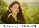 girl touch long brunette hair...   Shutterstock . vector #1147163408