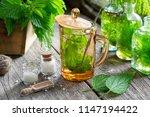 healthy nettle tea  bottles of... | Shutterstock . vector #1147194422