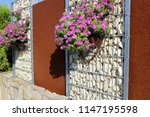 gabion fence wall with flowers | Shutterstock . vector #1147195598