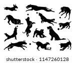 Stock vector set of pet silhouettes dogs with ball vector illustration 1147260128