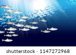 school of herring baltic fish.... | Shutterstock .eps vector #1147272968