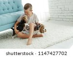 child with dog  | Shutterstock . vector #1147427702