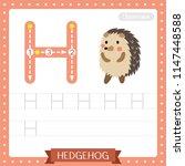 letter h uppercase cute... | Shutterstock .eps vector #1147448588