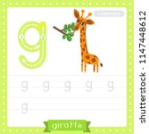 letter g lowercase cute... | Shutterstock .eps vector #1147448612