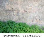 stone wall. green grass.... | Shutterstock . vector #1147513172