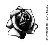 roses  hand drawn  | Shutterstock . vector #114752182