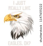 american eagle low poly design. ... | Shutterstock .eps vector #1147655222