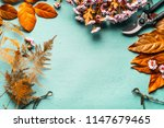 autumn leaves decoration and... | Shutterstock . vector #1147679465