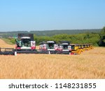 many harvesters work on a wheat ... | Shutterstock . vector #1148231855