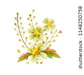 yellow wild plants boutonniere...   Shutterstock . vector #1148250758