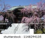 itabashi  tokyo   japan   april ...   Shutterstock . vector #1148294135