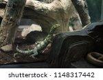 los angeles  california  usa ... | Shutterstock . vector #1148317442