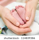 baby feet cupped into mothers... | Shutterstock . vector #114839386