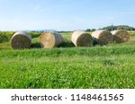 Line Of Drying Hay Balls On The ...