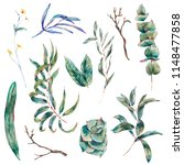 watercolor set of green... | Shutterstock . vector #1148477858