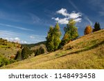 park autumn landscape with... | Shutterstock . vector #1148493458