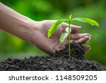 the hands that planted the... | Shutterstock . vector #1148509205