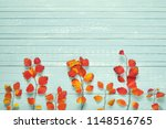 autumnal frame for your idea... | Shutterstock . vector #1148516765