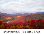 lush colourful autumn forest of ... | Shutterstock . vector #1148534735