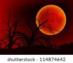 card for halloween. night... | Shutterstock .eps vector #114874642