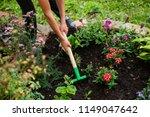 gardening. a shovel and a rake... | Shutterstock . vector #1149047642