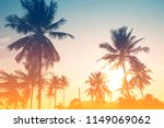 palm tree or coconut tree at...   Shutterstock . vector #1149069062