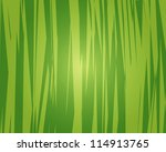 jungle background. jungle... | Shutterstock .eps vector #114913765