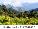 a panoramic view from the top...   Shutterstock . vector #1149187412