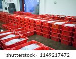 trays of fresh caught fish at... | Shutterstock . vector #1149217472
