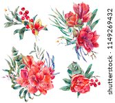watercolor floral set of red... | Shutterstock . vector #1149269432