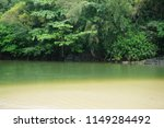 green lagoon in kauai  hawaii.  | Shutterstock . vector #1149284492