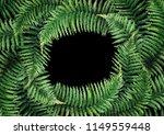 green watercolor wreth of fern... | Shutterstock . vector #1149559448