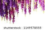 Purple Orchid Flowers In Line...