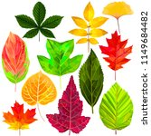 tree fallen leaf set colorful... | Shutterstock .eps vector #1149684482